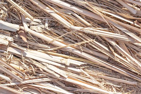 sinai peninsula: Natural textures. Weave, twisted twigs, dried stalks