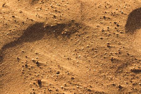 gravelly: Desert sand texture from the sand in Egypt