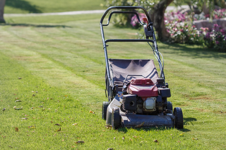 mower: Modern gasoline lawn mower on a green meadow. Garden equipment