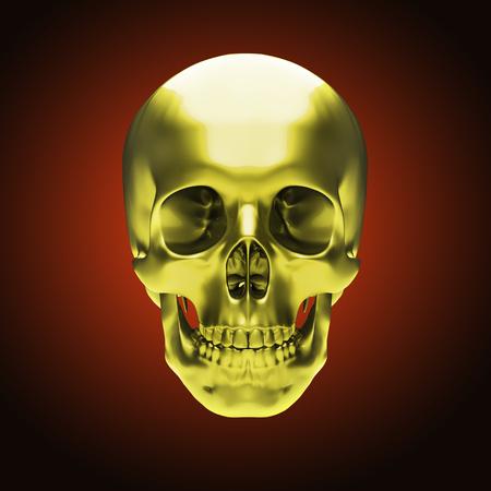 human skeleton: Gold metallic skull on dark red background