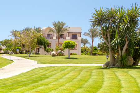 Tropical garden with palm trees, manicured lawns and paths