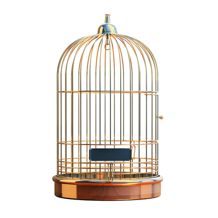 Empty bird golden cage isolated on white 스톡 콘텐츠
