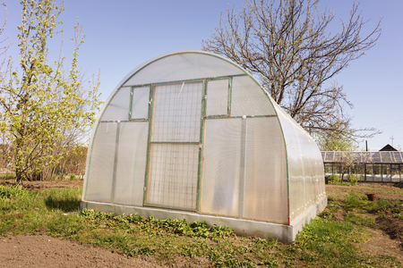 forcing bed: A small greenhouse with air vents in the garden
