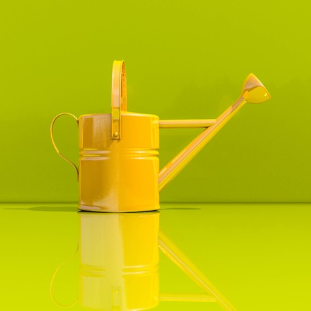 Watering Can on Green Background, Spring Garden Works Concept