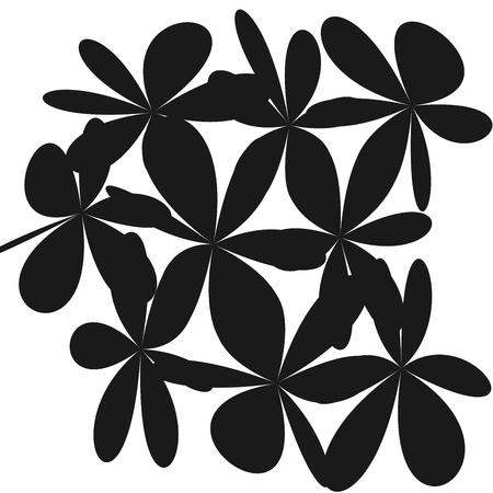Black flowers pattern. Illustration