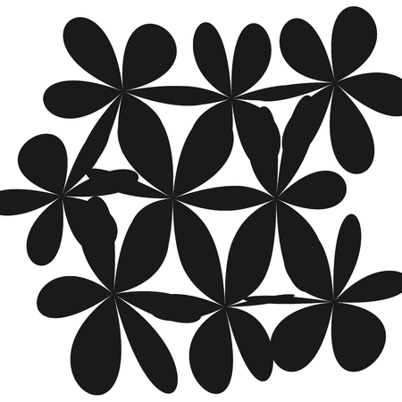 Whimsical Floral Background Flower Black and White Exquisite Gentle Floral Graphic Ornament.