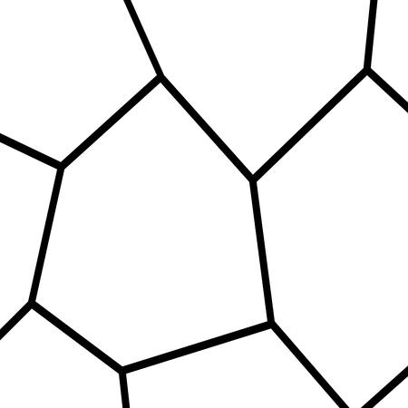 Black and White Irregular Grid Modular Structure Mesh