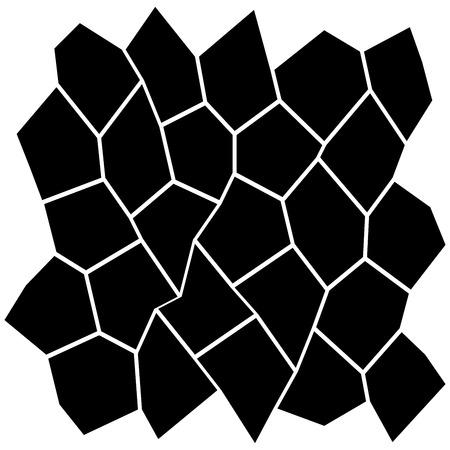 Black and White Irregular Grid Modular Structure Mesh Pattern Abstract Monochrome Geometric Polygon Texture Photo Mosaic Template photo Collage Background Ilustrace