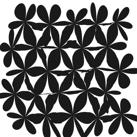 Whimsical Floral Background, Flower Black and White, Exquisite Gentle Floral Graphic Ornament, Minimalistic Fashion Ornament. Illustration