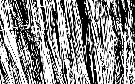 Grunge black and white straw texture template,dry straw, straw background texture, abstract natural thatched design.