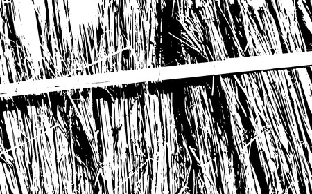 Grunge black and white straw texture template, dry straw. Straw background texture, abstract natural thatched design.