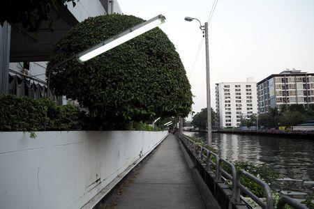 lane: bicycle lane
