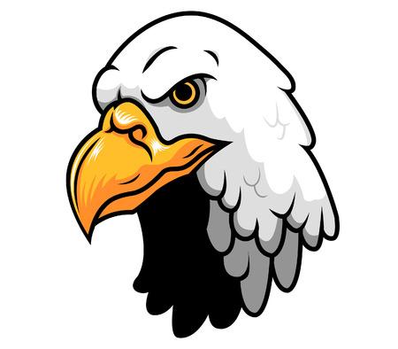 bald Eagle Head Imagens - 36627023