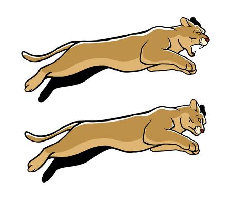 undomesticated: Vector illustration of jumping cougar
