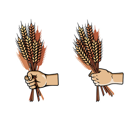 Hand Grab Bunch of Barley
