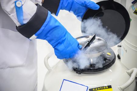 液体窒素タンク中の精子凍結貯蔵、実験室不妊