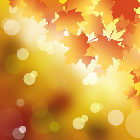 Abstract background in Autumn leaves. photo