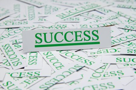 The word success surrounded by some shredded papers. photo