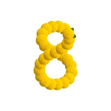 Number eight made of flower. photo