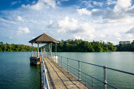 MacRitchie reservoir,