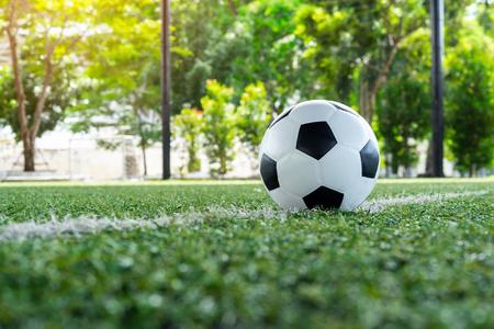 soccer Football on soccer field , football field , background texture