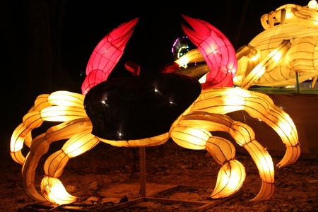 colors crab Amazing Lantern @ Hat Yai Songkha Thailand