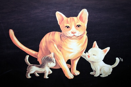 three kitten, focus on the black, isolated