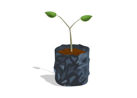 Planting plants on polybag. Simple flat illustration