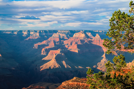 rim: Grand Canyon National Park, Arizona, USA Stock Photo