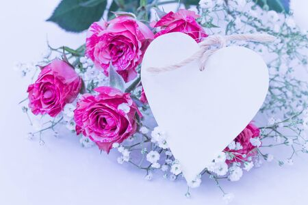 rosa: Two-Tone Pink Roses with heart card. Stock Photo