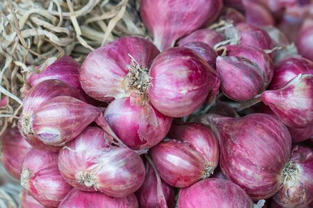 Clouse up a group of red onion, shallot. Banco de Imagens