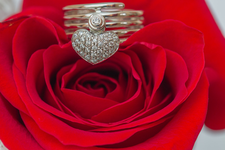 White gold ring with dimaonds  a heart shap on red rose.