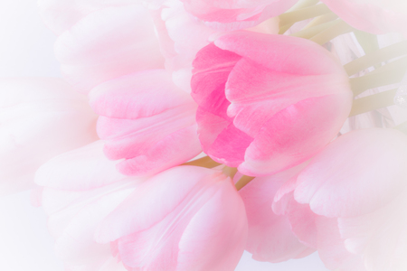fresh pink lilies on wicker basket decorate pearl and ribbon. Closeup and soft background Imagens