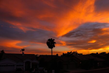 Dramatic sunset and sunrise sky with palm silhouette.