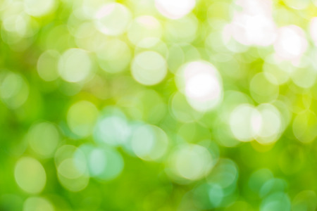 Abstract nature green and yellow background. Defocused. Foto de archivo