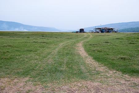 driveway: Driveway meadow