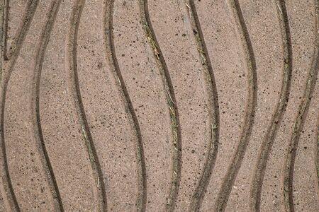 empedrado: Superficie del corredor pavimentado con ladrillos
