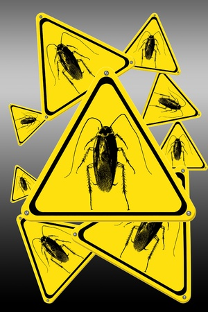 plague: cockroach signs Stock Photo