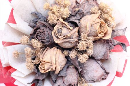 impermanent: a bouquet of dry flowers