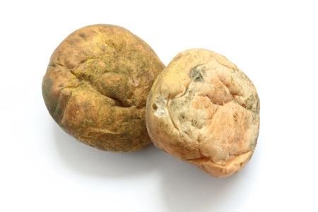 moldy bread