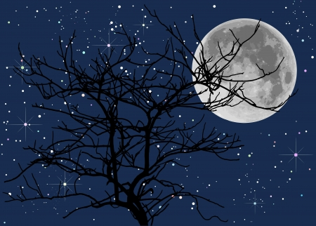 full moon and died trees Stock Vector - 17594494