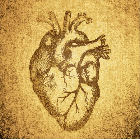 heart drawing on grunge texture background photo