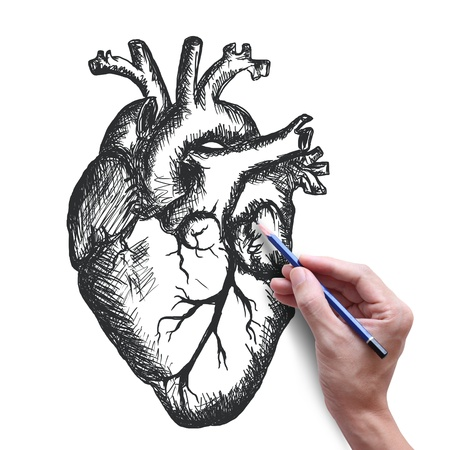 heart drawing on white background photo