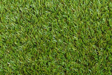 フィールドの緑の草テクスチャ背景。