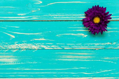 flores moradas: Flor p�rpura en fondo de madera de la vendimia