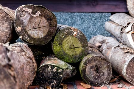 stack of firewood: Firewood Log Stack Stock Photo