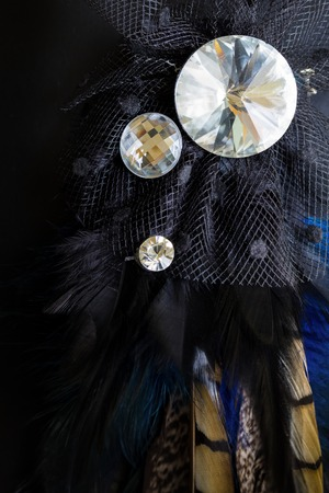 broach: Crystal Broach with Feather