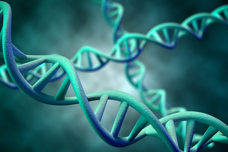 genomes: DNA Molecule, 3D Rendering Stock Photo
