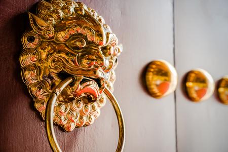 Metal Lion Door Knocker at Wooden Gate