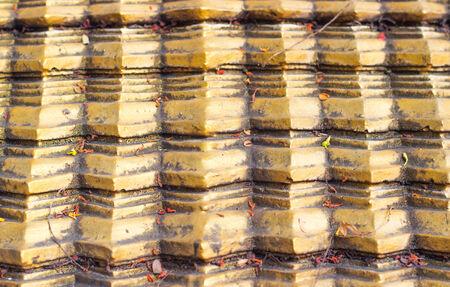stucco gold photo